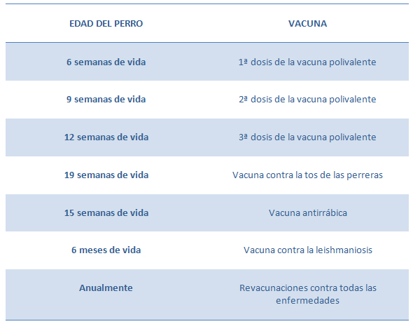 Calendario Vacunación Perros