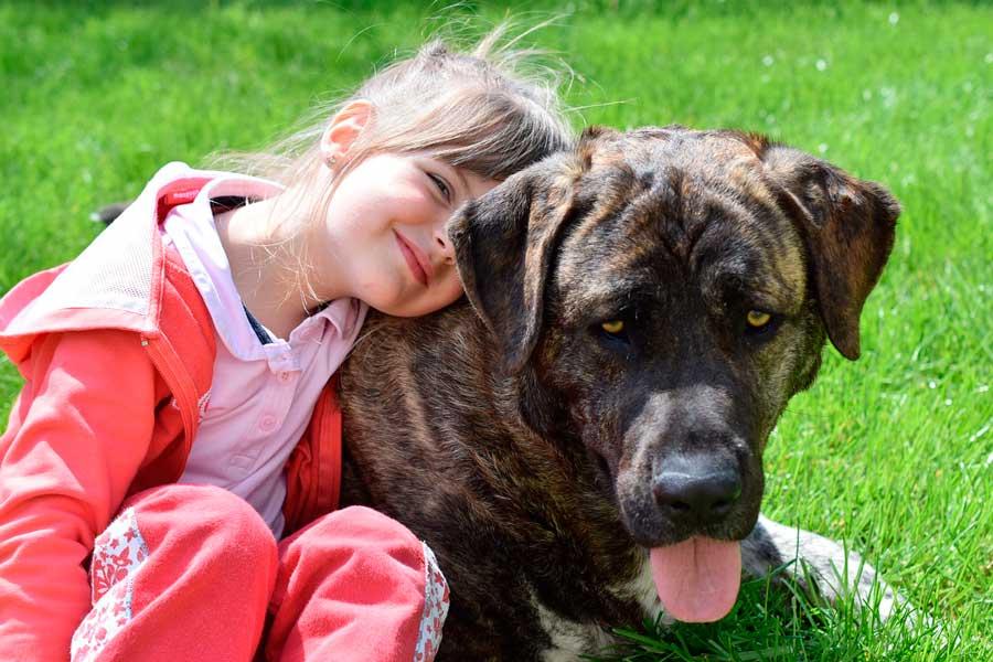¿Es bueno criar a los niños con animales?